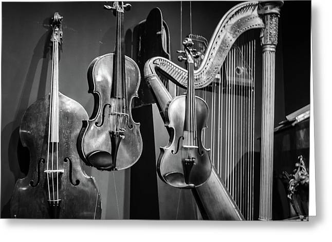 Stringed Instruments Greeting Card