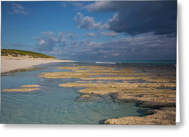 Stromatolites On Stocking Island Greeting Card