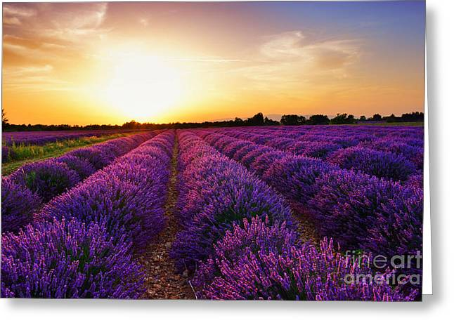 Stunning Landscape With Lavender Field Greeting Card