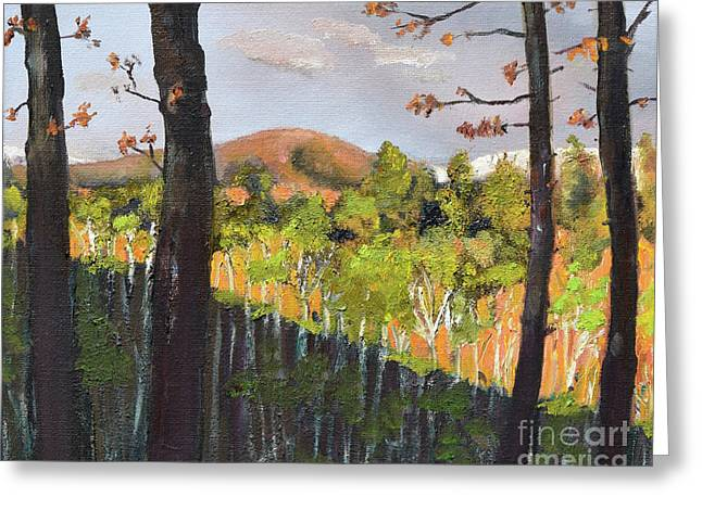 Greeting Card featuring the painting Summer At Pink  Knob In Ellijay by Jan Dappen