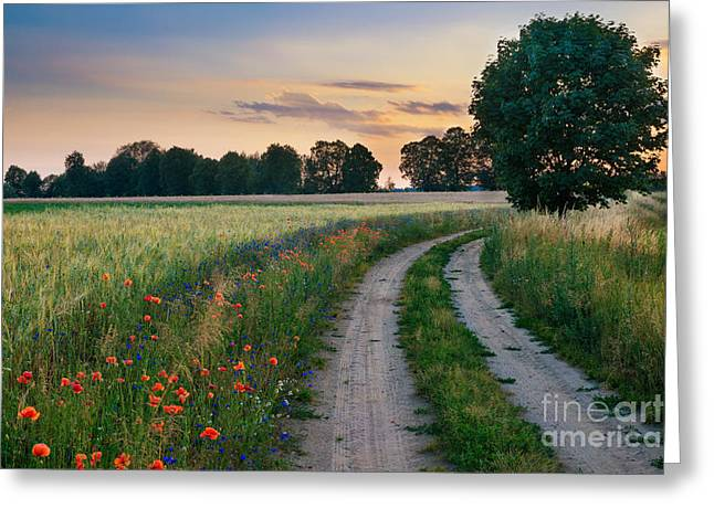 Summer Landscape With Country Road And Greeting Card