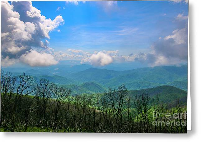 Summer Mountain View Greeting Card