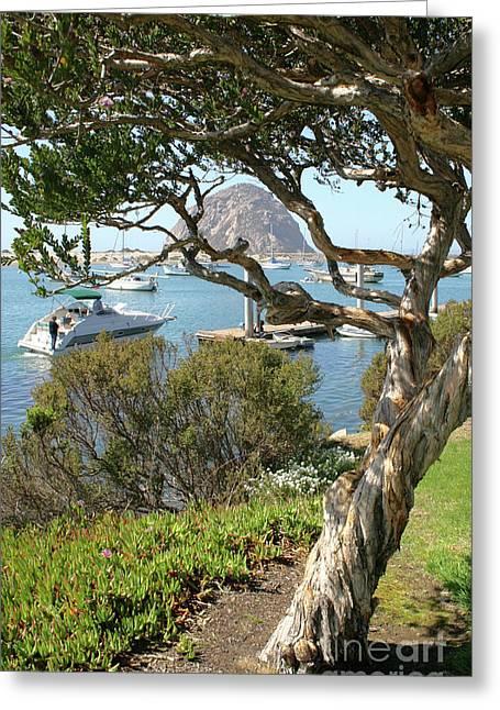 Sunny Day At Morro Bay Greeting Card