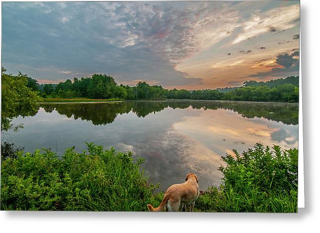 Greeting Card featuring the photograph Sunrise At Ross Pond by Matthew Irvin