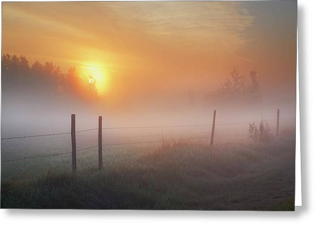 Sunrise Over Morning Pasture Greeting Card