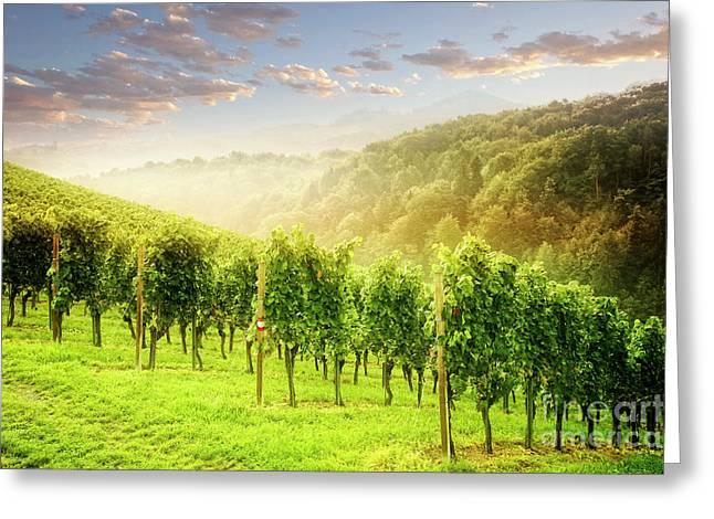 Sunrise Over Styria Greeting Card