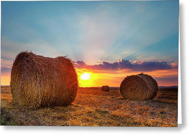 Sunset Bales Greeting Card