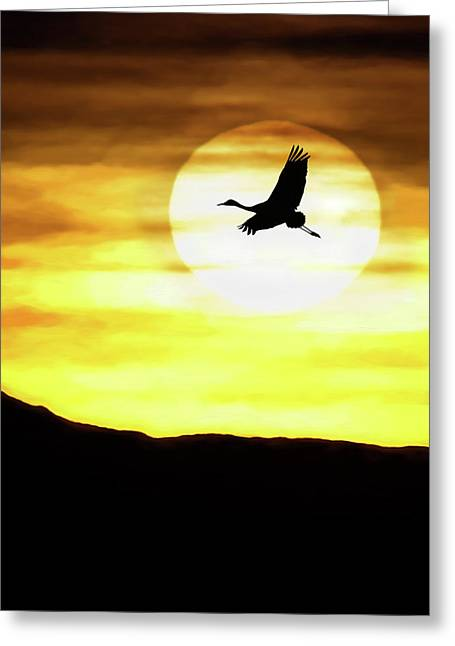 Sunset Flyway Greeting Card
