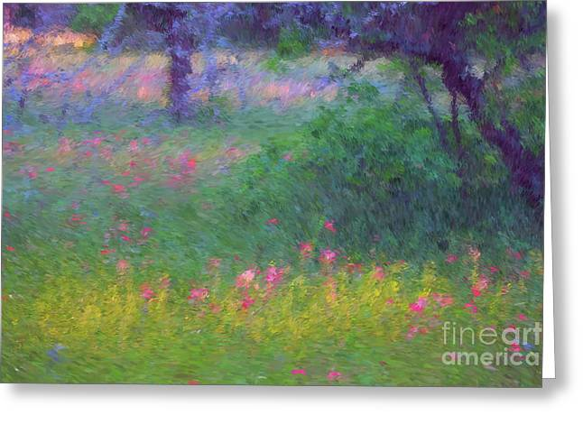 Sunset In Flower Meadow Greeting Card