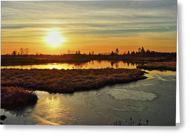 Sunset In Pitt Meadows Greeting Card
