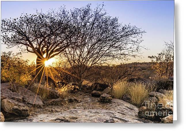 Sunset In The Erongo Bush Greeting Card