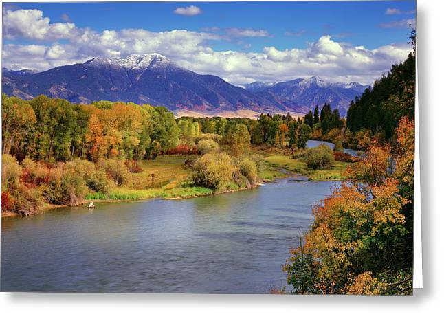 Swan Valley Autumn Greeting Card