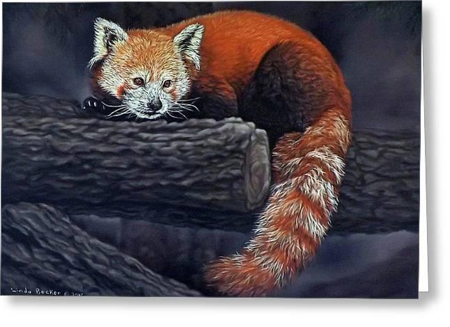 Takeo, The Red Panda Greeting Card