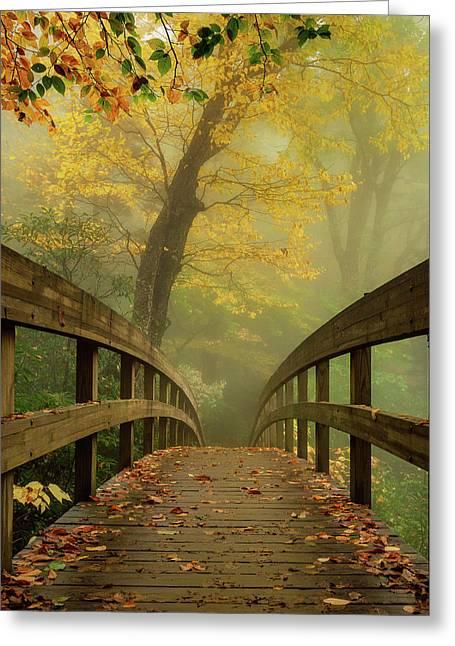 Tanawha Trail Blue Ridge Parkway - Foggy Autumn Greeting Card