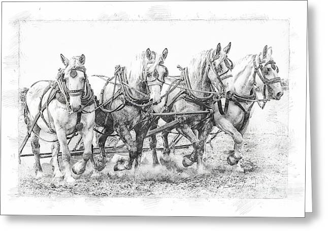 Greeting Card featuring the photograph Team Work 2 by Brad Allen Fine Art
