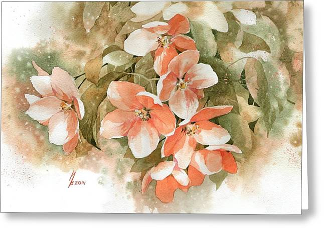Tender Blossom Of Apple Tree Greeting Card