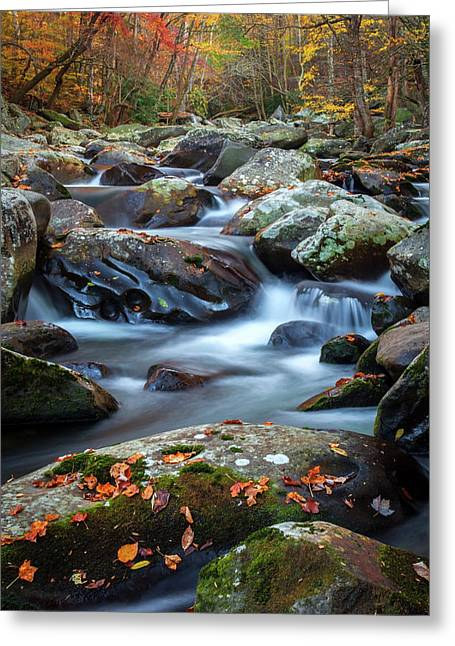 Tennessee Autumn  Greeting Card