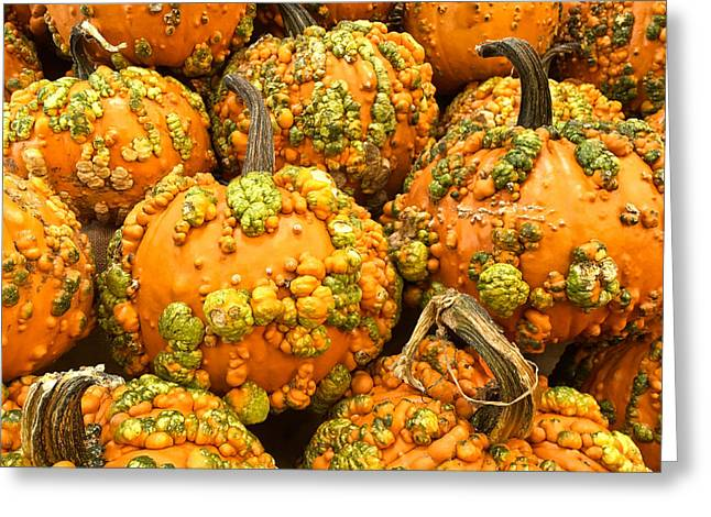 Textured Pumpkins  Greeting Card