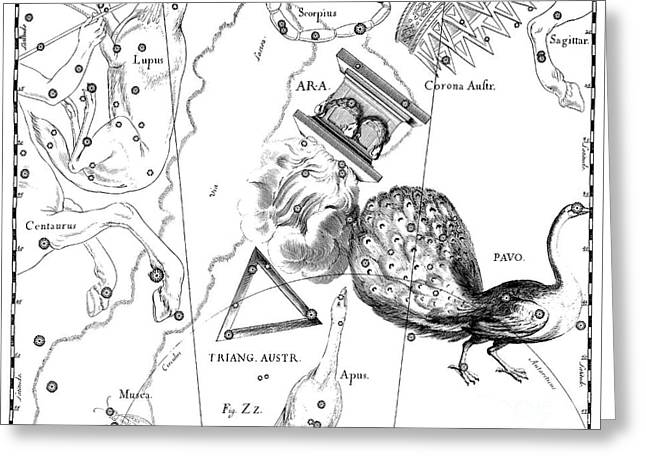 The Austral Constellations Of The Altar, The Southern Triangle And The Peacock Greeting Card