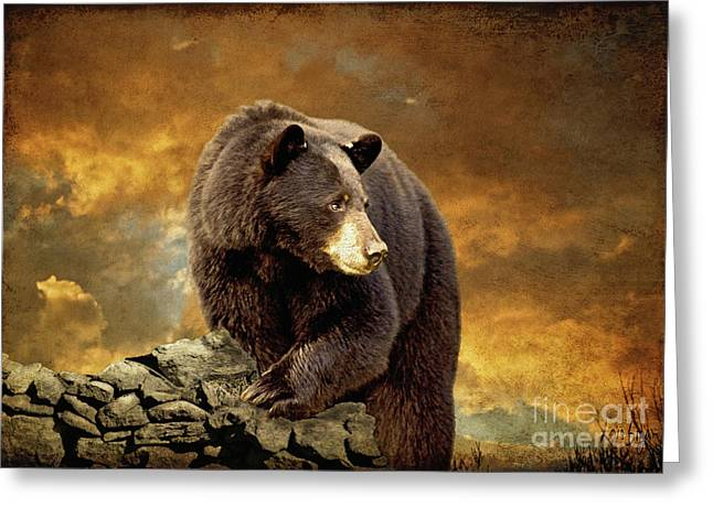The Bear Went Over The Mountain Greeting Card