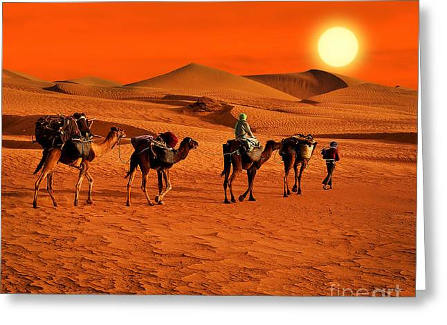 The Berbesky Tribe Passes The Desert In Greeting Card
