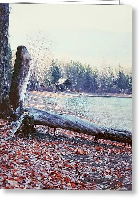 Greeting Card featuring the photograph The Cabin by Deahn      Benware