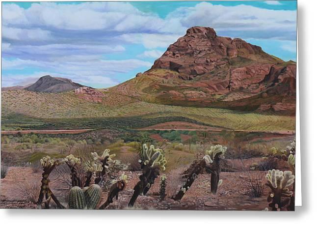 The Cholla At Mount Mcdowell, Arizona Greeting Card