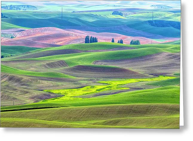 The Color Palette Of The Palouse Greeting Card