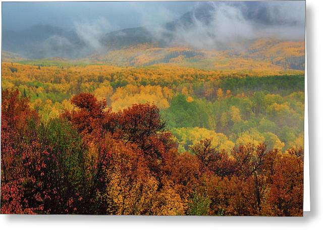 The Feeling Of Fall Greeting Card