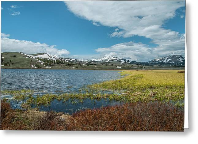 Greeting Card featuring the photograph The Gallitin Mountain Range  by Matthew Irvin