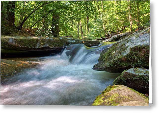 Greeting Card featuring the photograph The Gentle Stream Fall by Mark Dodd