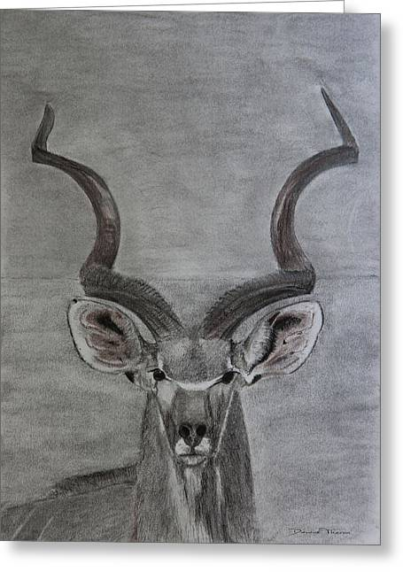 The Kudu Greeting Card