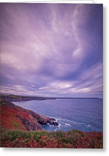 The Lizard Point Greeting Card