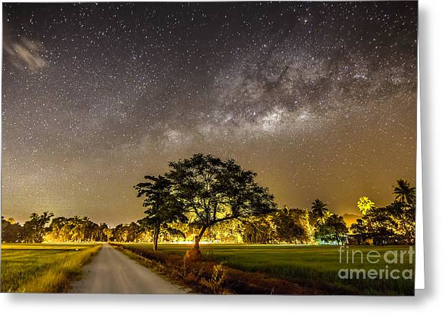 The Milky Way And The Tree Stand Alone Greeting Card by A.aizat