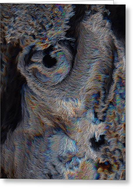 The Old Owl That Watches Greeting Card