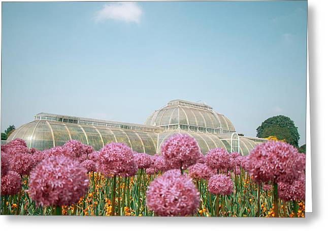 The Palm House Greeting Card