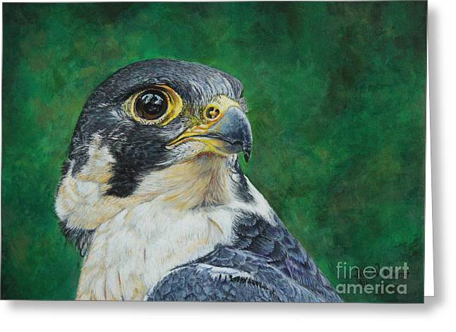 The Proud Peregrine....fastest Creature On The Planet Greeting Card
