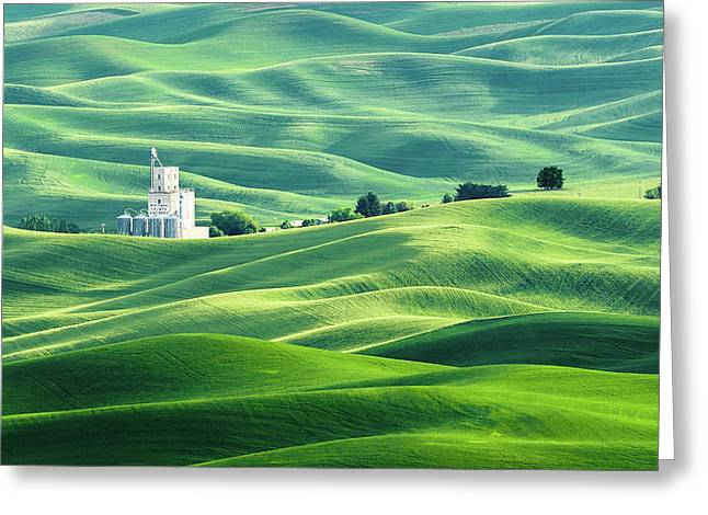 The Rolling Fields Of Palouse Greeting Card