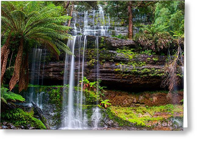 The Russell Falls, A Tiered Cascade Greeting Card