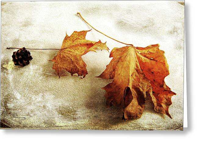 Greeting Card featuring the photograph The Sound Of Autumn by Randi Grace Nilsberg