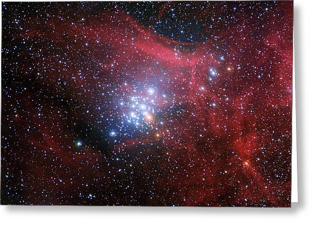 The Star Cluster Ngc 3293 Greeting Card