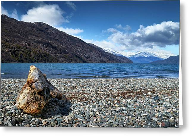 The Trunk, The Lake And The Mountainous Landscape Greeting Card