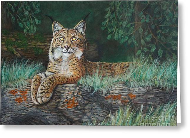 The Wild Cat  Greeting Card