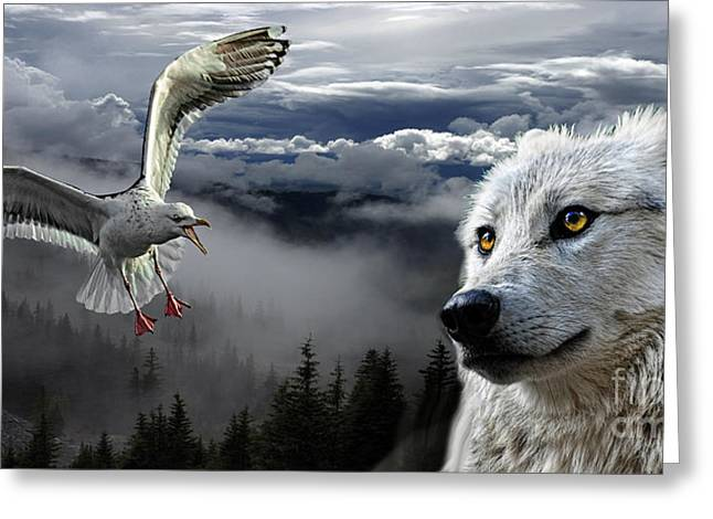 The Wolf And The Gull Greeting Card