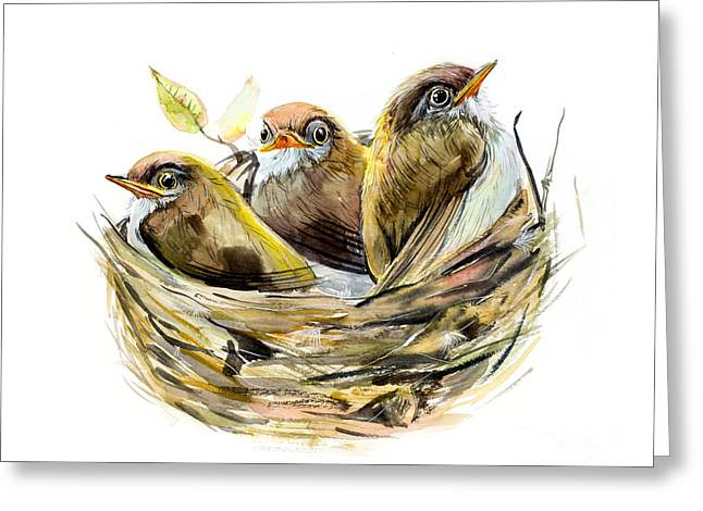 Three Chicks. Nest With A Baby Birds Greeting Card