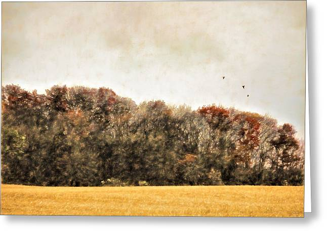 Three Crows And Golden Field Greeting Card