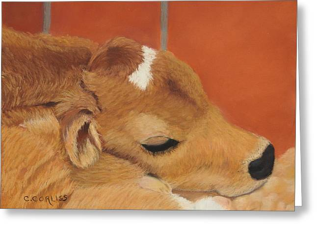 Three Hours Old Greeting Card