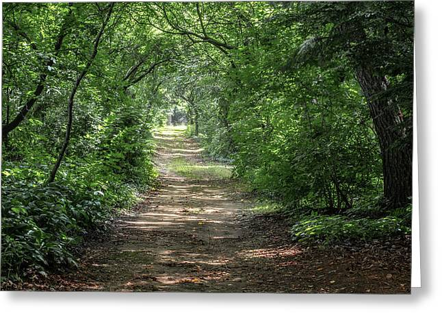 Greeting Card featuring the photograph Through The Forest by Dale Kincaid