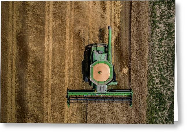 Through Wheat Greeting Card