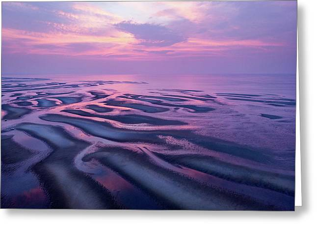 Tidal Flats Sunset Greeting Card